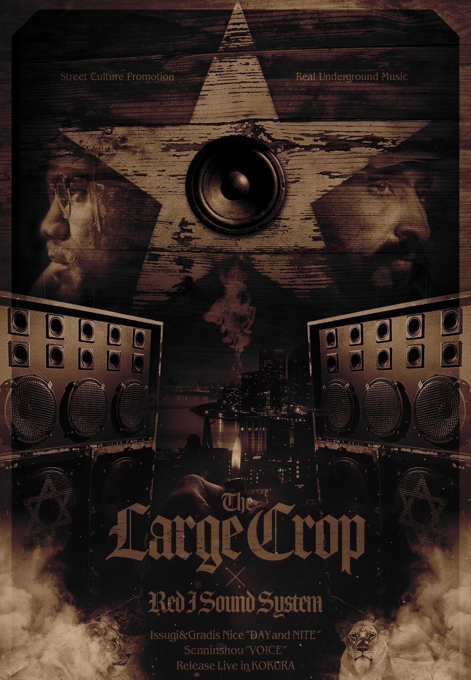 LargeCrop.Flyercopy